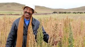 Un campesino  en la aldea aymara de Nasa Q'ara, también conocida como Nazacara