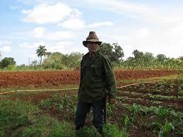 Juan Reyes en su finca de Cotorro, en Cuba.