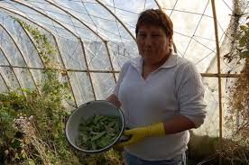 Blanca Molina muestra unos guisantes orgánicos