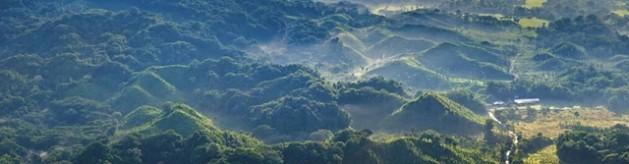 deforestacion1-629x164