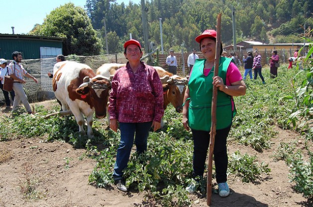 agricultoras-chile