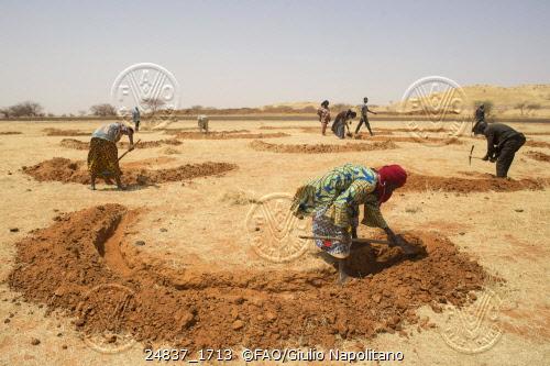 desertificacion1